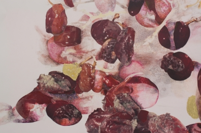 "Detail of ""Grapes, Pear and Pomegranate Rot and Repose"""