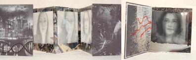 Digital prints, plastic, collage and thread on backboard; 2013